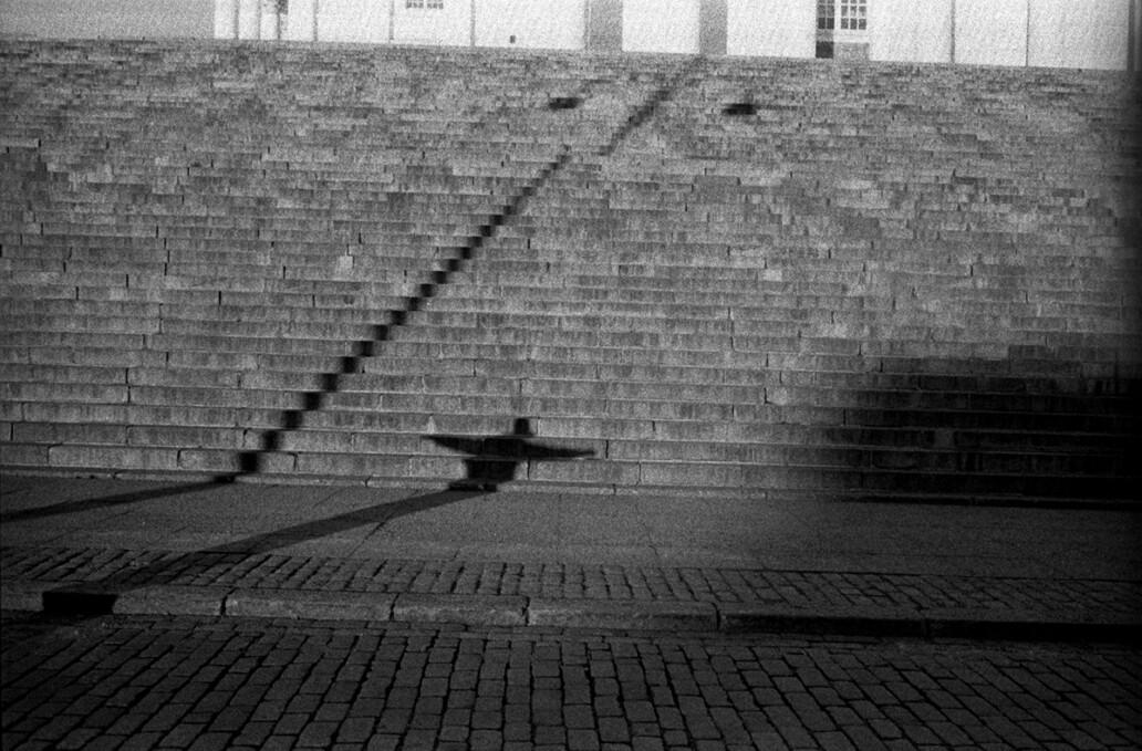 Veils   Jules Allen Photo